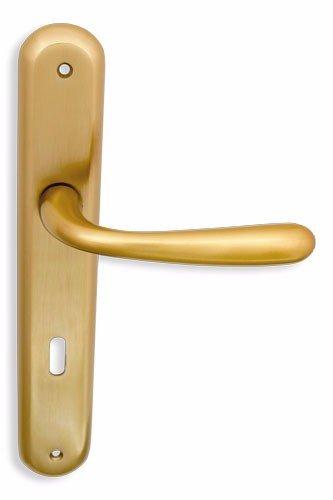 Πετουγιες Πορτας Με Πλακα Χρωμα:Χρυσο Ματ Κωδ 3007